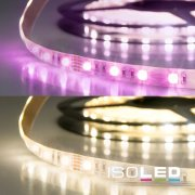 LED SIL-Flexband, 24V, 19W/m, 95W, IP20, RGB+WW