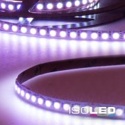 LED Flexband LINEAR, 24V/DC, 12W/m (60W), IP20, RGB,...